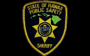 Public Safety Sheriff Patch