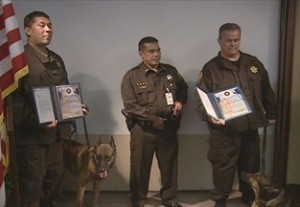 """Two Sheriff Deputies and their Deputy Sheriff canines were recognized by the United States Postal Inspection Service today for their role in """"Operation Club Shabu."""""""