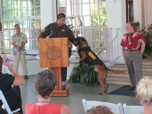 As Gov. Neil Abercrombie looked on, the deputy K9s donned their custom vests in public for the first time at an unveiling held today at Washington Place.
